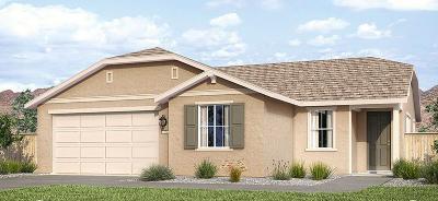 Carson City Single Family Home Active/Pending-Loan: 1132 Elk Ridge Dr.