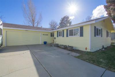 Carson City Single Family Home For Sale: 601 Pioche St