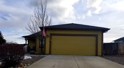 Carson City Single Family Home For Sale: 823 Plymouth
