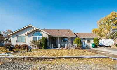 Carson City Single Family Home For Sale: 3753 Lyla
