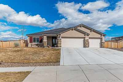 Sparks Single Family Home For Sale: 3740 Exposition Court