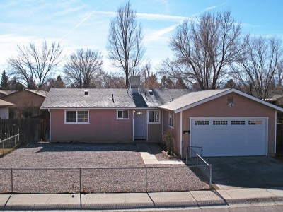 Carson City Single Family Home For Sale: 961 Armstrong