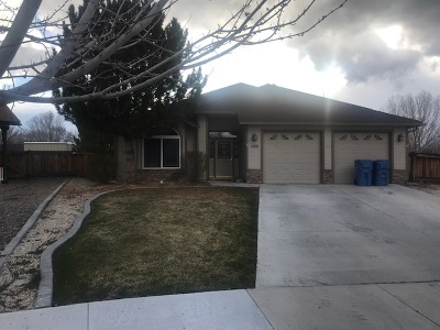 Gardnerville Single Family Home For Sale: 1360 Bryan Lane