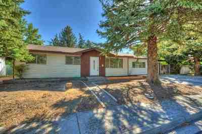 Carson City Single Family Home For Sale: 705 Chernus