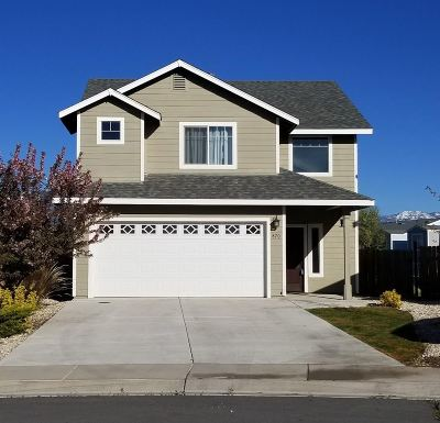 Carson City Single Family Home For Sale: 870 Cassidy Court
