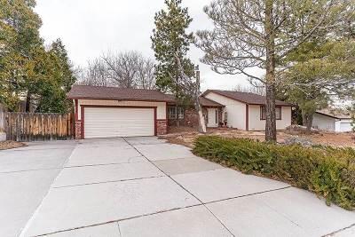 Reno Single Family Home Active/Pending-Loan: 2135 Parkway Drive