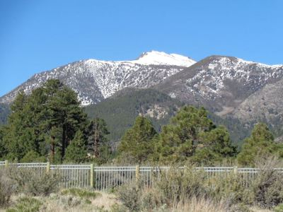 Reno Residential Lots & Land For Sale: 16885 Salut Court
