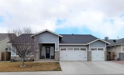 Fernley Single Family Home For Sale: 545 Grey Eagle