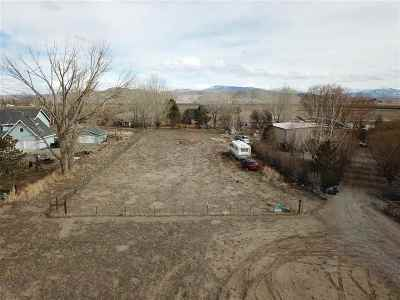 Yerington Residential Lots & Land For Sale: 138 Hwy 208
