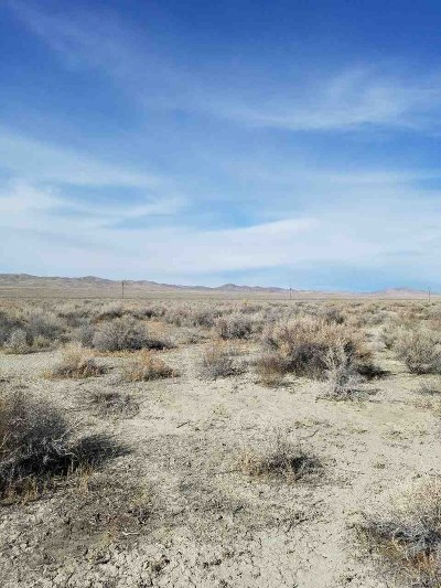 Lovelock Residential Lots & Land For Sale: 21755 Pyramid Lake Road