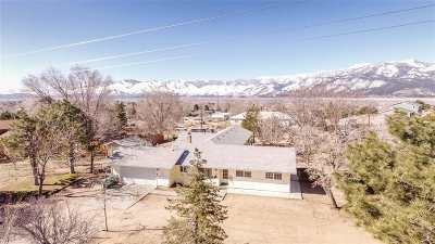 Washoe Valley Single Family Home For Sale: 2135 N Chukar Dr