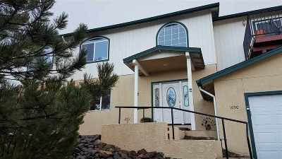 Carson City Single Family Home For Sale: 1090 Spring Meadow Dr.