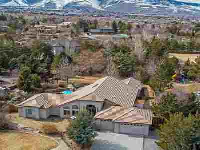 Reno Single Family Home For Sale: 65 Chinchilla
