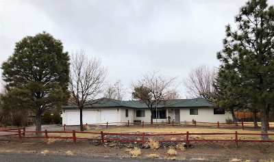 Gardnerville, Minden Single Family Home Back On Market: 787 Pinto Cir