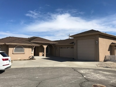 Carson City Single Family Home Active/Pending-House: 1740 Walnut Ct.