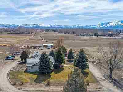 Gardnerville Single Family Home For Sale: 1565 Orchard