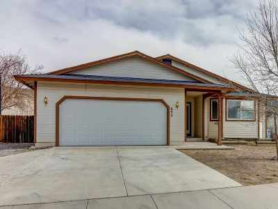 Fernley Single Family Home For Sale: 655 Silver Lace Boulevard