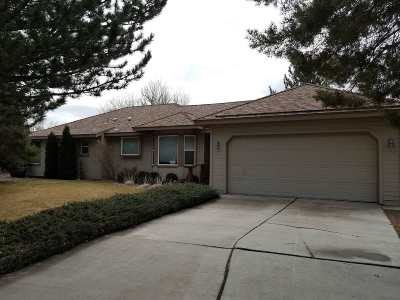 Sparks Single Family Home For Sale: 310 Rosetta Stone Drive