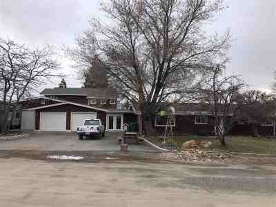 Reno Single Family Home For Sale: 170 Redstone Drive