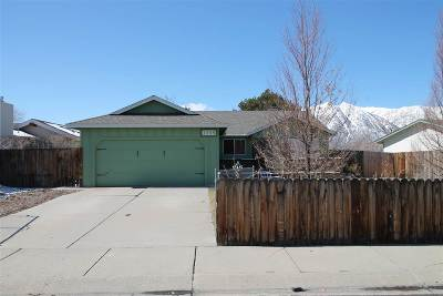 Gardnerville Single Family Home For Sale: 1335 Leonard