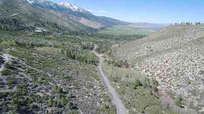 Washoe Valley Residential Lots & Land For Sale: 7945 Musgrove Creek