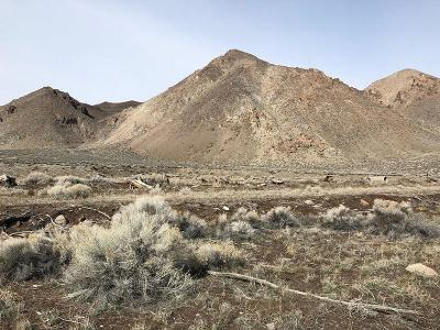 Yerington Residential Lots & Land For Sale: 012-411-02 Highway 339