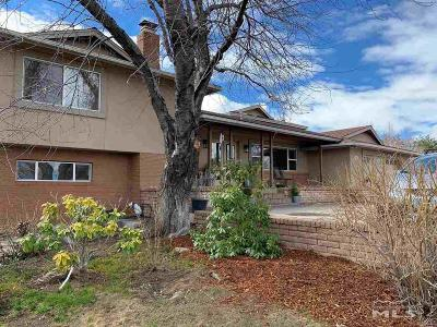 Reno Single Family Home For Sale: 5300 Canyon Drive