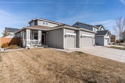 Reno Single Family Home For Sale: 8903 Wynne Street