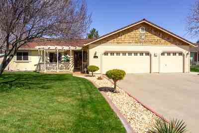 Minden NV Single Family Home Active/Pending-Loan: $465,000
