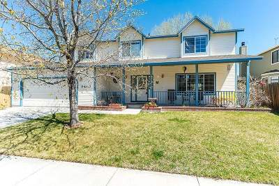 Carson City Single Family Home For Sale: 3443 Halleck Drive