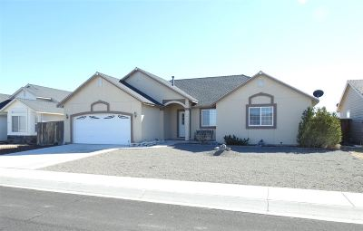Fernley Single Family Home For Sale: 505 Wedge Ln