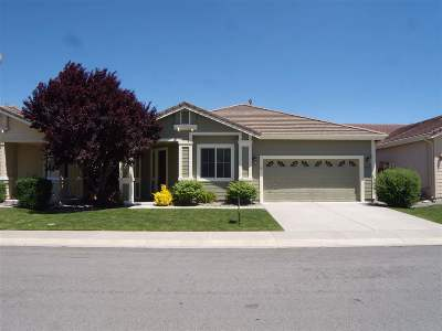 Minden NV Single Family Home New: $439,000