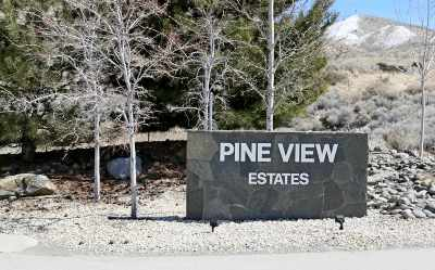 Gardnerville NV Residential Lots & Land Active/Pending-Loan: $55,000