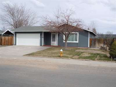 Gardnerville Single Family Home New: 744 Hornet Dr