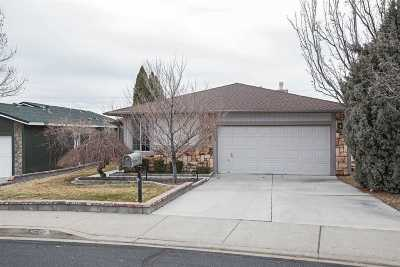Reno Single Family Home New: 3080 Achilles Drive