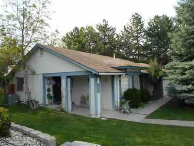Reno Single Family Home New: 1781 Albright Ct