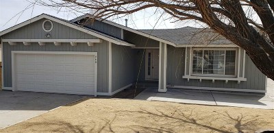 Wadsworth Single Family Home New: 460 Dispensia