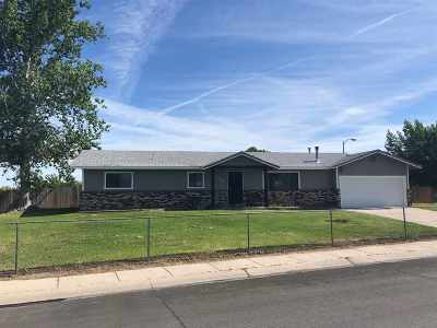 Gardnerville Single Family Home New: 1300 Cardinal Court