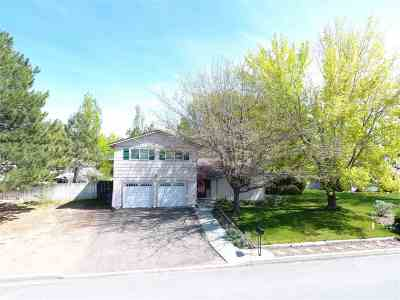 Winnemucca Single Family Home New: 5020 Offenhauser Drive