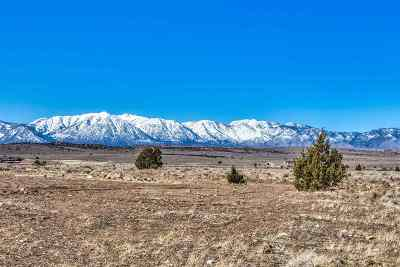 Gardnerville Residential Lots & Land For Sale: 2655 Mountain Clover Rd