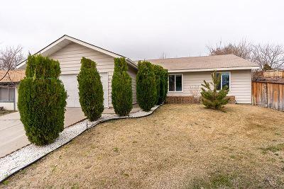 Reno Single Family Home New: 573 Marta Way