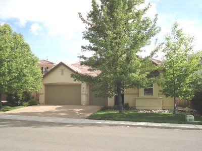 Reno Single Family Home New: 560 Terracina Way