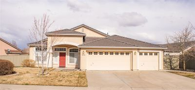 Reno Single Family Home New: 10490 Arbor Way