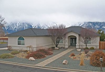 Gardnerville Single Family Home Active/Pending-Loan: 1506 Deseret Drive