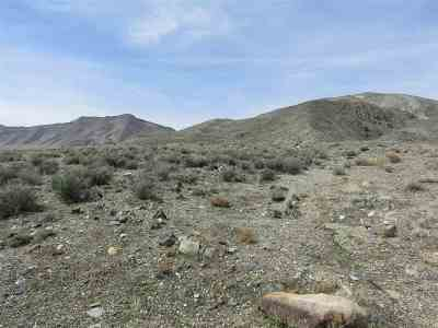 Yerington NV Residential Lots & Land For Sale: $400,000