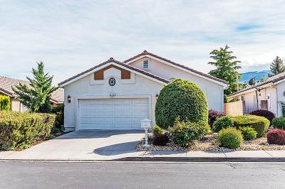 Reno Single Family Home New: 2450 Granite Springs Rd
