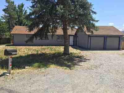 Reno Single Family Home New: 3725 Peregrine