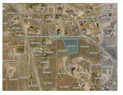 Washoe Valley Residential Lots & Land For Sale: 4340 Jumbo Grade