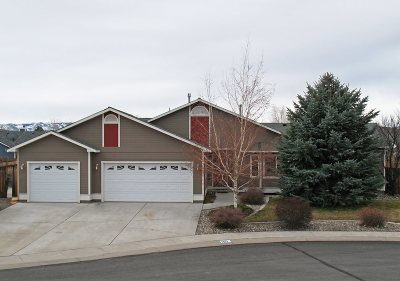 Gardnerville Single Family Home For Sale: 1413 Ashley Court