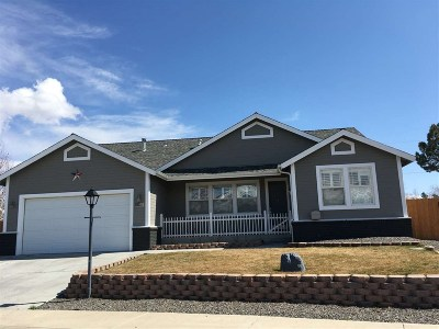 Gardnerville Single Family Home Active/Pending-Call: 1041 Silveranch